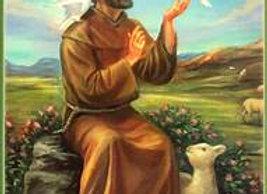 Saint Francis of Assisi Animal Blessing & Protection (Lady Eirene & Daena)