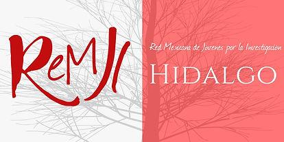Hidalgo perfil.jpg
