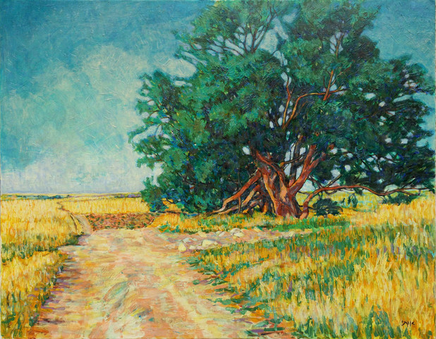 Fields Rouhama