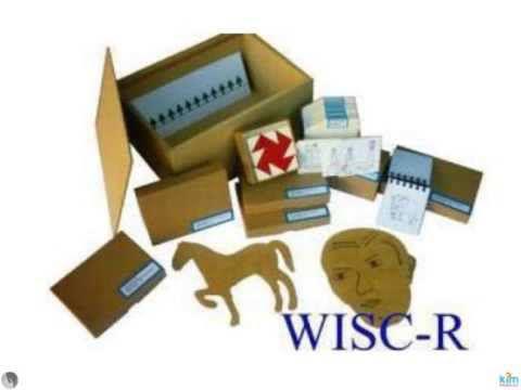 WISC-R ZEKA TESTİ