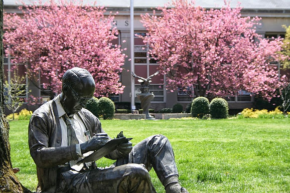 Discover Your Best Self at Hofstra University