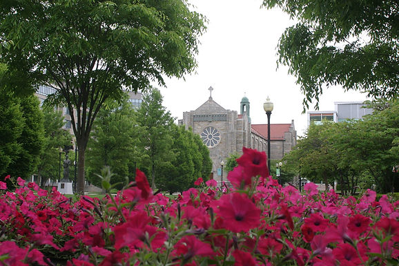 A Transformative Jesuit Education at Buffalo's Canisius College