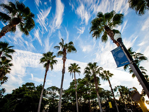 Embrace Fearless Learning at New College of Florida