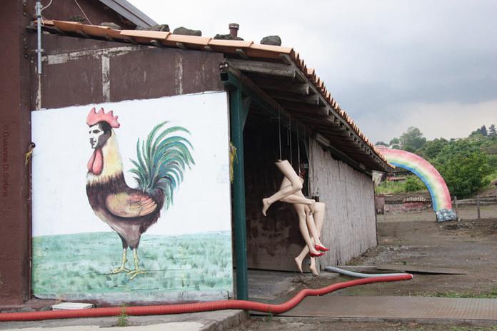 A rural latin lover, 2015