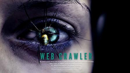 Web Crawler Poster 2021 Landscape .jpg