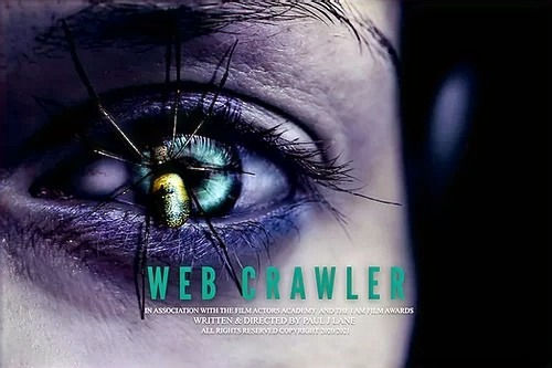 web crawler_edited.jpg