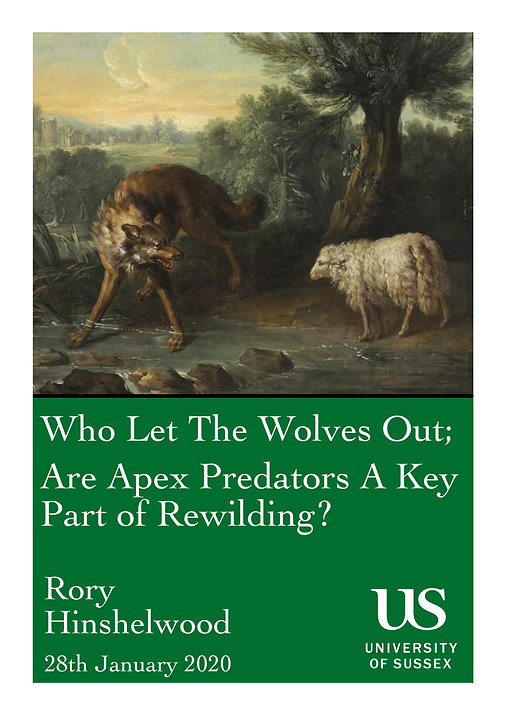 Who Let The Wolves Out; Are Apex Predators A Key Part of Rewilding