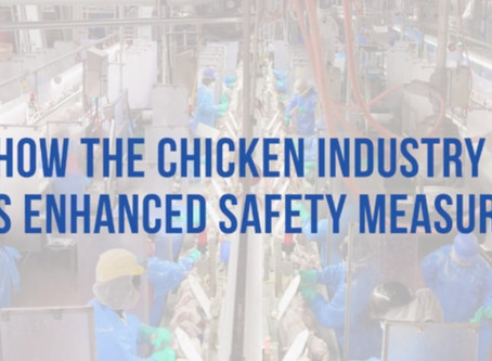 Chicken Industry's Enhanced Safety Measures During COVID-19