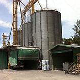 Alimentos Guardia Importacion Maiz Granel