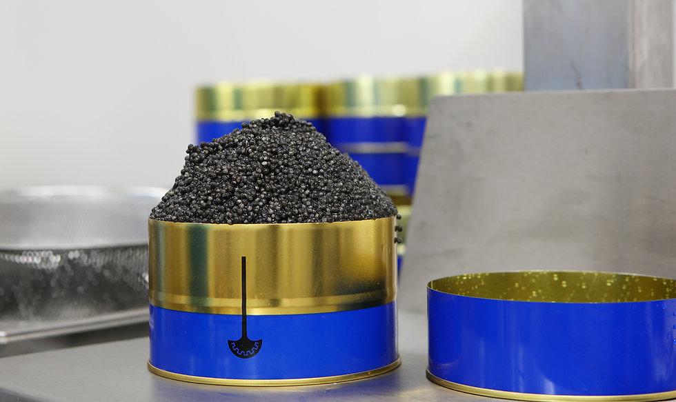 Caviar packagin