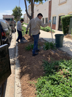 Local Gardening services in SLO