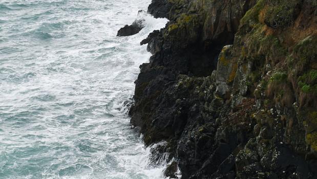 Guernsey2.jpg