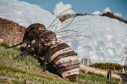 A 20-foot bee sculpture appears to be making a home in a bubble hive, but rather it is an additional piece of artwork for visitors to the biome to enjoy.   Wanderlost Magazine   Mary Kathryn Carpenter