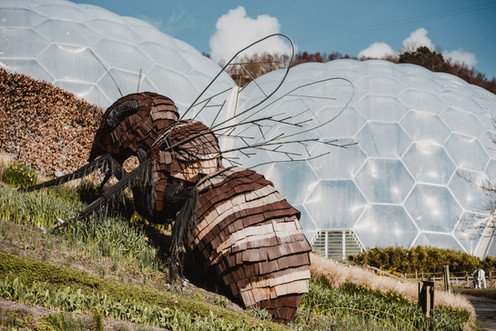 A 20-foot bee sculpture appears to be making a home in a bubble hive, but rather it is an additional piece of artwork for visitors to the biome to enjoy.   Wanderlost Magazine | Mary Kathryn Carpenter
