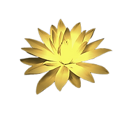 Golden%2520Lotus%25204_edited_edited.png