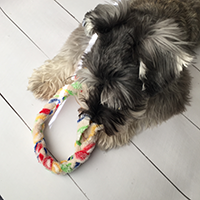 No Sew Dog Toy Impossible Braid