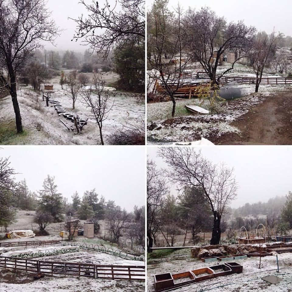 Snow at Mitsero