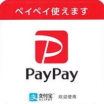paypay (2).jpeg