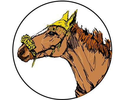 """Atelier """"découvrir  l'ennéagramme avec les chevaux"""""""