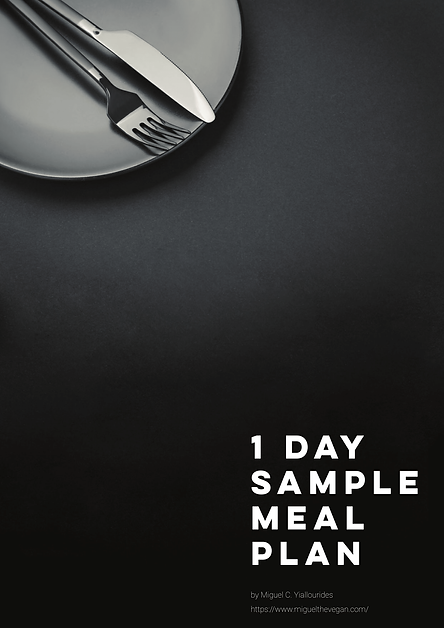 1 DAY SAMPLE MEAL PLAN COVER.png