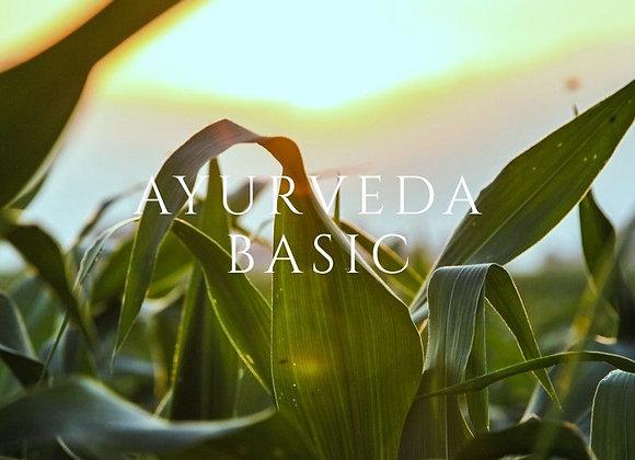AYURVEDA BASIC