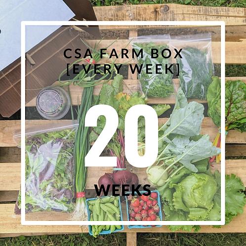 20 Week Organic CSA Farm Box 2022