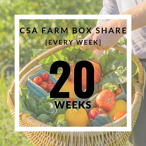 20 Week Organic CSA Farm Box