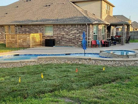 Re-Sod after pool install