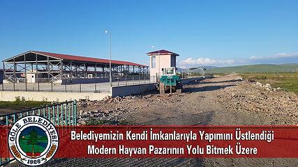 Hayvan_Pazarı_Yolu.jpg