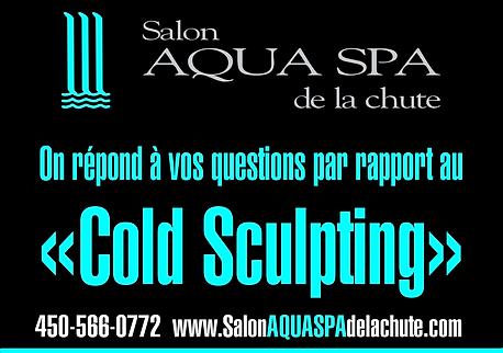 cold-sculpting-00-vos questions.png