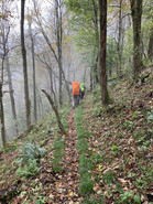 AT Pilgrimage Walking in Mist.jpg