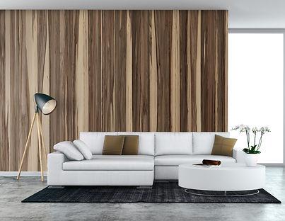 Modern living room, white sofa and wood wall