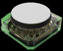 The eLichens' Cranberry Sensor