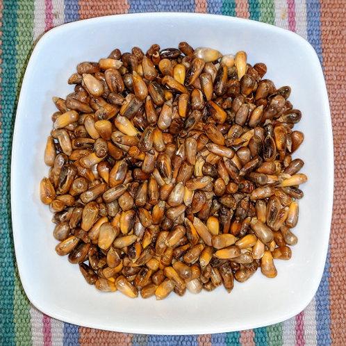 Cancha (Chulpe de Maiz)