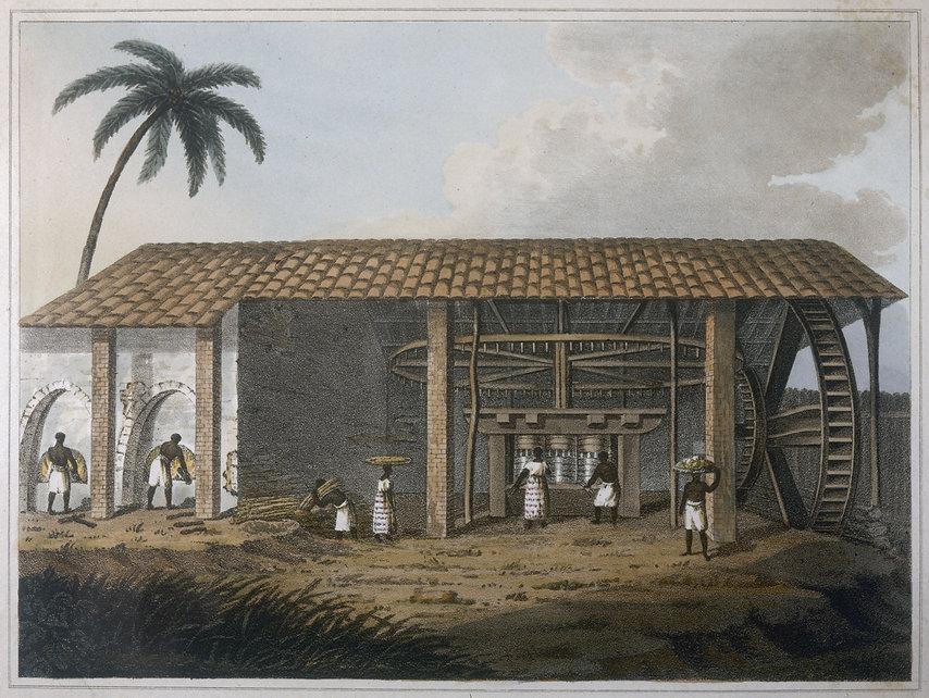 Forever French Caribbean Rum Cream Histo