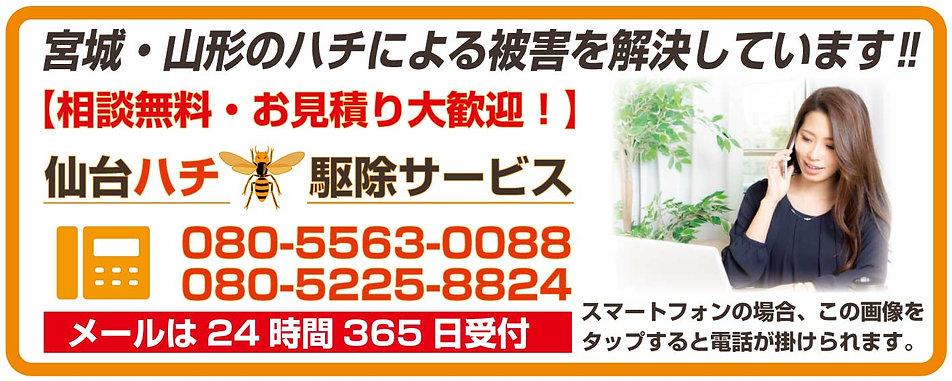 TOP_スライドショー_仙台ハチ駆除センター④.jpg