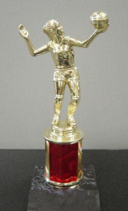 vollyball-trophy6-183x300.jpg