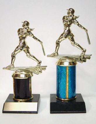 softball trophy-234x300.jpg