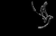 WVVC FM 2020 Logo.png