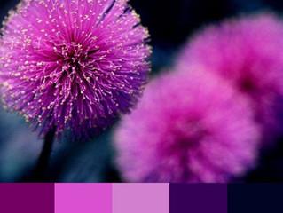 Pontos de Crochê - #01 - Gráfico e combinação de cores