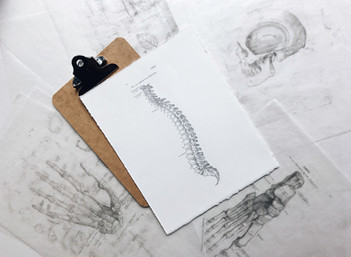 Your spine? It has your back - A mindset shift towards a more positive outlook on back pain
