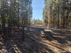 Dog Park is in the works!