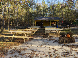 New Picnic tables are here