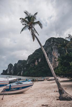 Phi Phi Islands, Phuket, Thailand