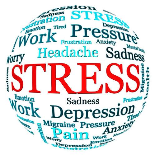 Freedom From Stress 90-Day Program