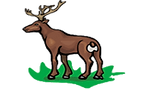 Deer Icon_ no background.png