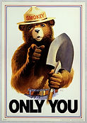 440px-Uncle_Sam_style_Smokey_Bear_Only_Y