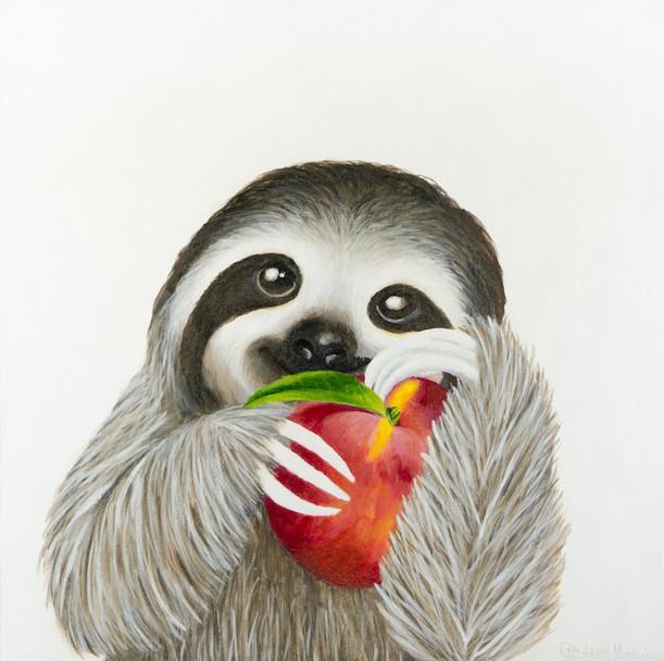 Peachy Sloth