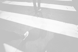 Crossing_edited.png