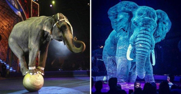 Circo con hologramas